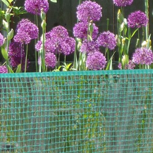 green fence netting - lifestyle